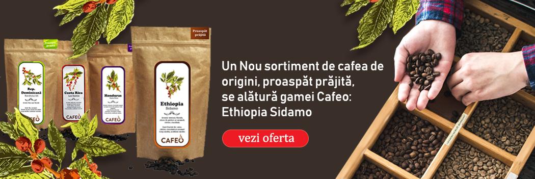 Un Nou sortiment de cafea origini Ethiopia Sidamo